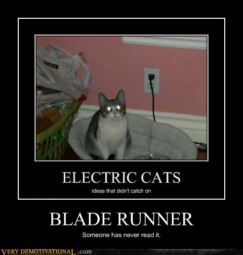 Blade Runner Cats animals - 7379671808