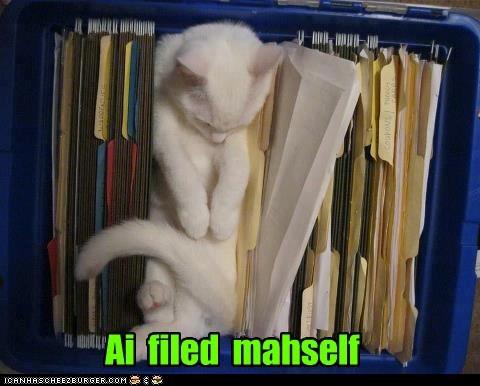Ai  filed  mahself