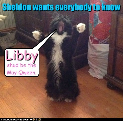 Sheldon wants everybody to know Libby shud be the May Qween.