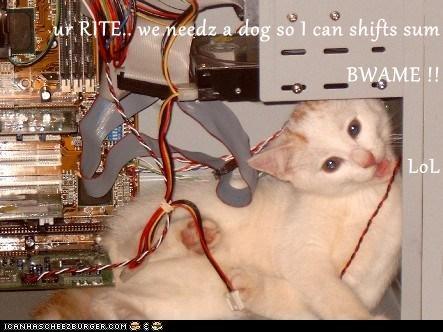 Cheezburger Image 7380541696