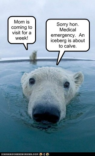Mom is coming to visit for a week! Sorry hon. Medical emergency. An iceberg is about to calve.