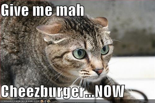Cheezburger Image 738253056