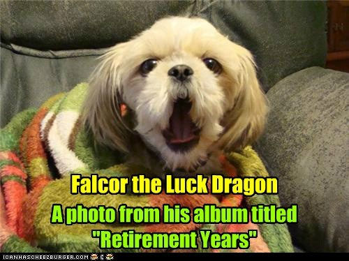 "Falcor the Luck Dragon A photo from his album titled ""Retirement Years"""