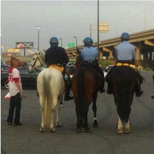 horse masks,horses,police