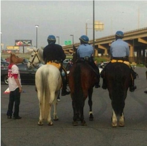 horse masks horses police - 7383326464