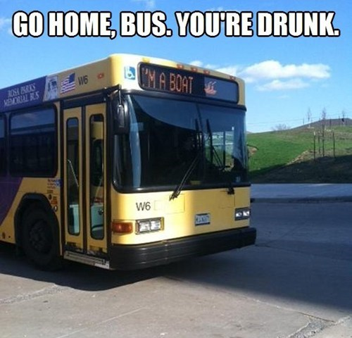 go home you're drunk public transportation bus