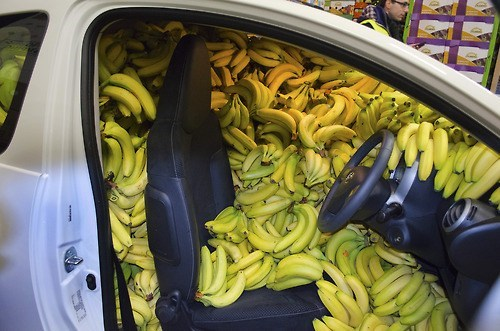 wtf,bananas,cars