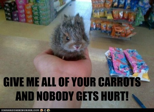 GIVE ME ALL OF YOUR CARROTS AND NOBODY GETS HURT!