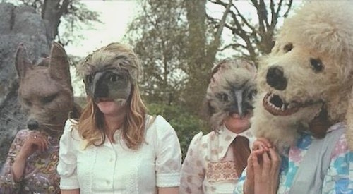 wtf,masks,animals