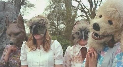wtf masks animals - 7383979520