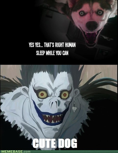 dogs,anime,death note,ryuk