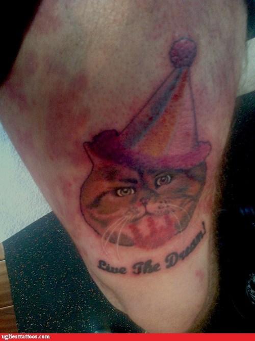 party hats bets dreams Cats - 7384386304