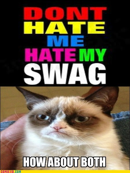grumpy cats,hate,swag
