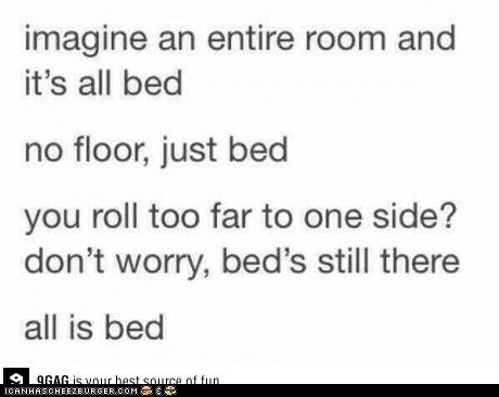 Cheezburger Image 7385564672