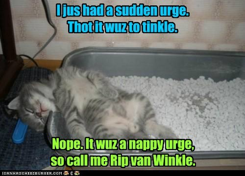 I jus had a sudden urge. Thot it wuz to tinkle. Nope. It wuz a nappy urge, so call me Rip van Winkle.