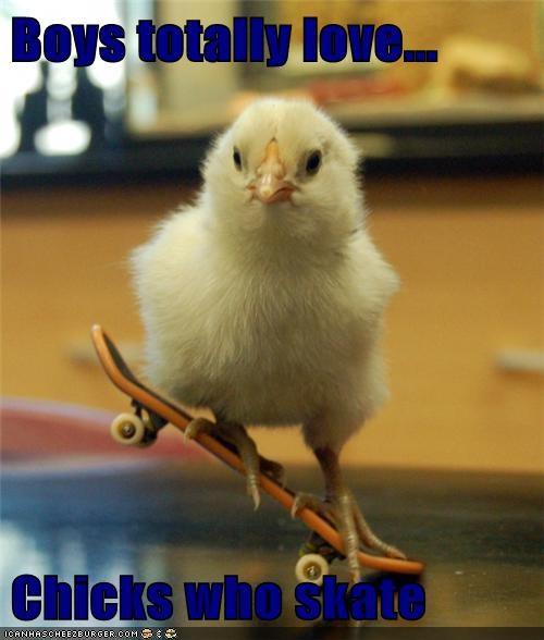 chicks,sk8r girl