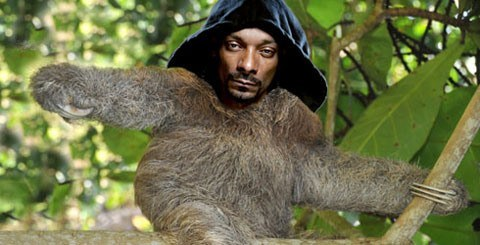 snoop lion,list,snoop dogg