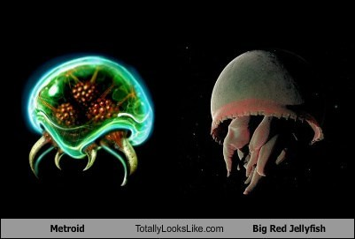 Aliens,metroids,totally looks like,jellyfish