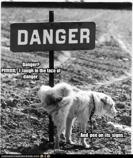 Danger? Pfffttttt, I laugh in the face of danger. And pee on its signs