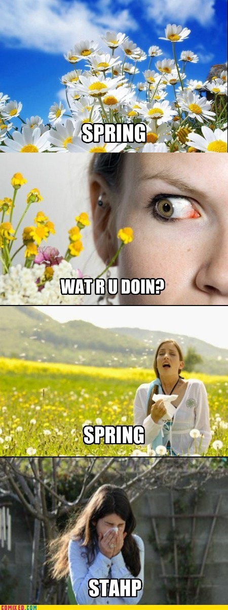 pollen spring allergies stahp funny - 7391185152