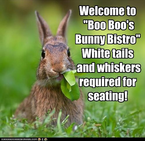 "Welcome to ""Boo Boo's Bunny Bistro"" White tails and whiskers required for seating!"