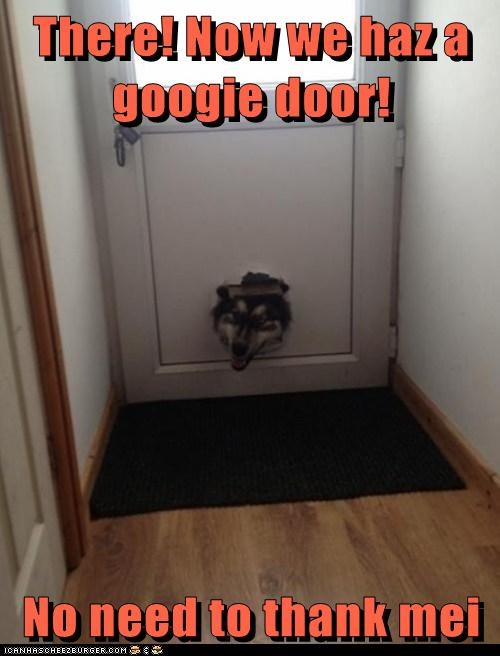 doggy door - 7392390400