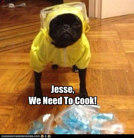 Jesse, We Need To Cook!
