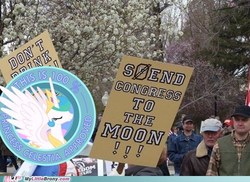 Bronies,IRL,protests,celestia,to the moon