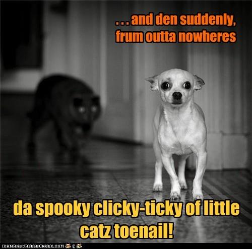 scary cat run - 7395364864