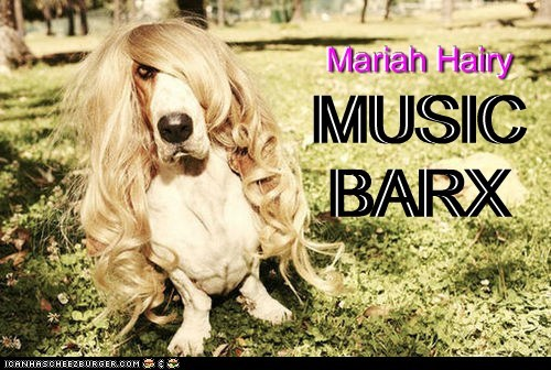Mariah Hairy Mariah Hairy MUSIC BARX MUSIC BARX MUSIC BARX Mariah Hairy
