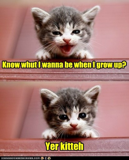 grow up kitty - 7397417984