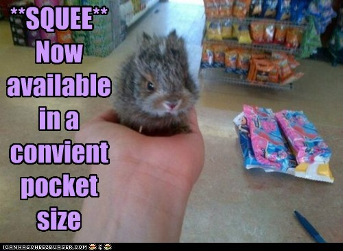 pocket size bunny squee - 7399484928