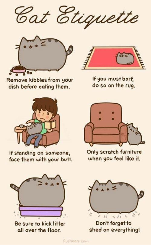 etiquette Cats pusheen