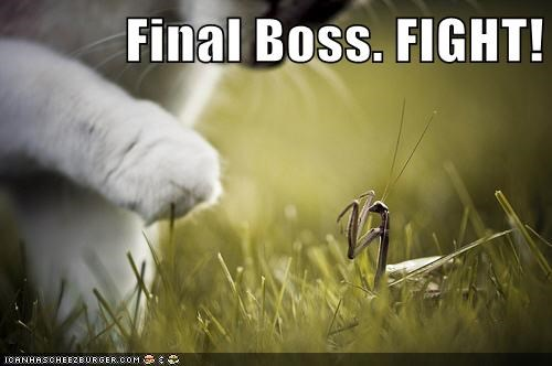 Final Boss. FIGHT!