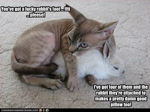You've got a lucky rabbit's foot ... fftt ... pleese!