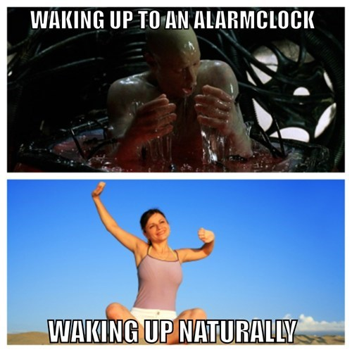 the matrix,alarm clocks,waking up