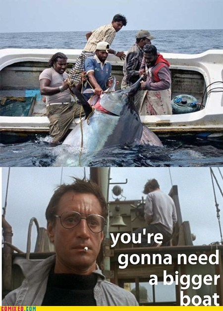 jaws,wtf,sharks,boats