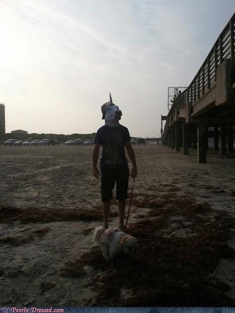 unicorn beach masks dogs - 7400852736