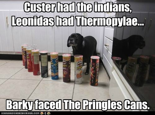 chips,dogs,cans,pringles