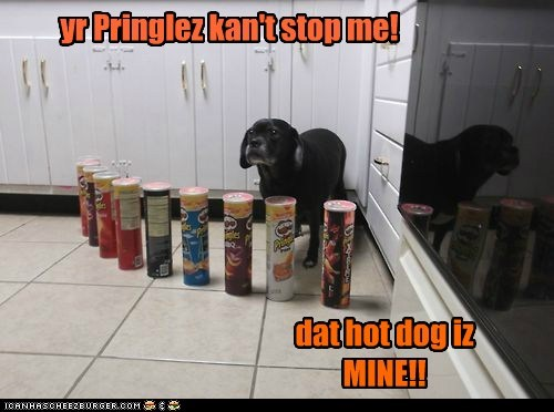 Cheezburger Image 7401217792