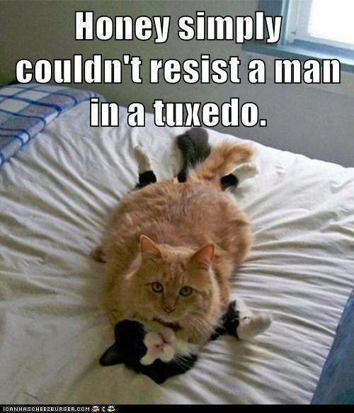tuxedo irresistible - 7401904896