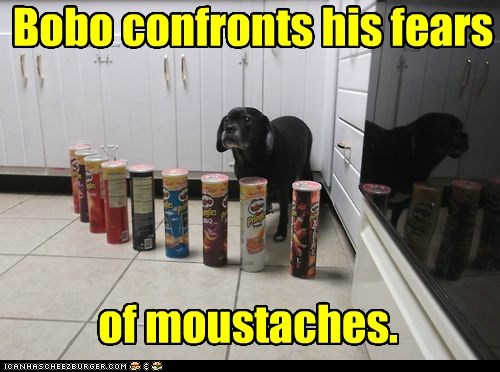 Bobo confronts his fears of moustaches.