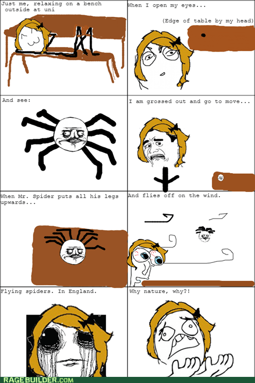 spiders england oh god why - 7404560384