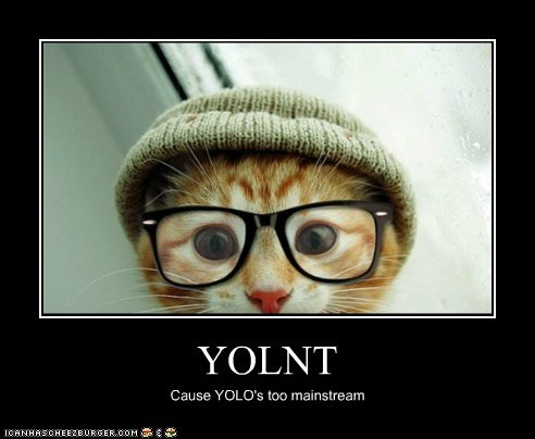YOLNT Cause YOLO's too mainstream