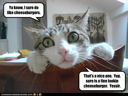 Ya know, I sure do like cheeseburgers.