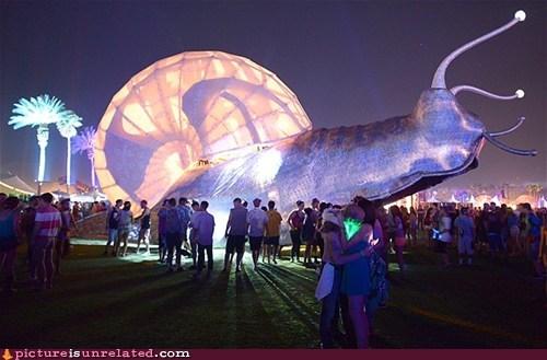 snails wtf huge monster - 7406796288