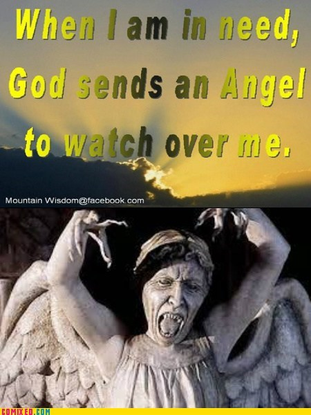 wtf angels doctor who - 7407062784