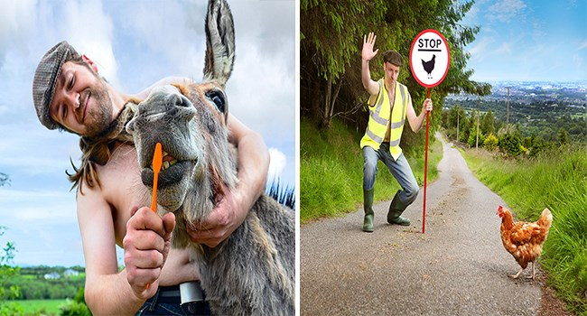 calender 2019 irish farmers funny photos funny animals - 7407621