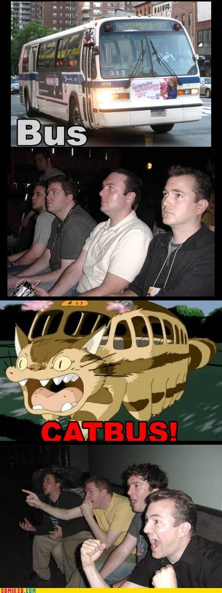 reaction guys Cats bus - 7409817856