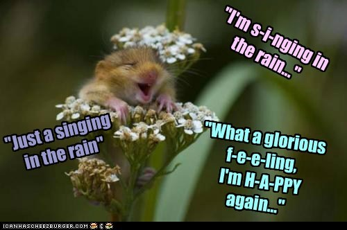 Singing in the rain,song